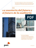 Informe Temas Candentes Auditoria