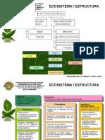 3, 4 Estructura, Flujo m y e Ecología i 1-2013
