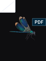 DragonFly FlightManual En