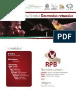 FT_Desmodus Rotundus