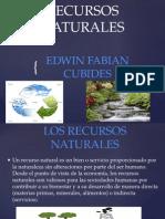Recursos Naturales -Edwin Fabian Cubides-9-3