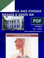 126157095191253 Anatomia Do Nariz e Seios Paranasais