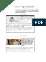 Animales en peligro de extinción(español).docx