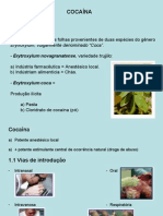 DeterminaçãoCocaína (1)