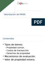 C4 Valorizaci n de RRNN
