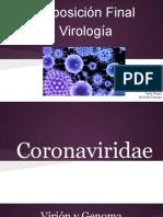 Coronaviridae, Rhabdoviridae, Arteriviridae y Bunyaviridae