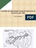 Amazonia Borracha