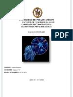 Mapas Conceptuales Neuropsicologia