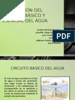 Describción Del Circuito Básico y Esencial Del Agua