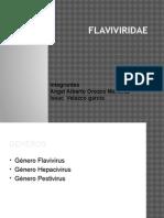 Flaviviridae.pptx