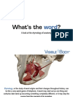VB2014 Anatomy Etymology eBook