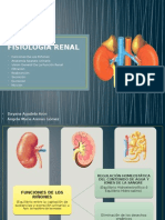 221588197-Fisiologia-Renal.pptx