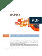 Informe IP PBX