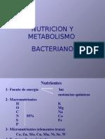 2.- Metabolismo