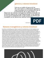 Presentación Ratones Transgénicos y Ratones Knockout