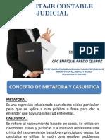 Exposicion Pericia Contable - Cpc. Enrique Aredo Quiroz