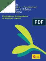 PrevencionDependenciaMayores[1] Copy