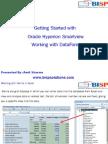 HFM Smartview DataForm