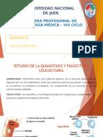 Exposicion de Estudio de La Quimiotaxis y Fagocitosis Leucocitario