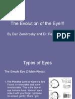 DanEvolution of the Eye