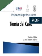2 Teoría Del Caso. Curso en Técnicas Básicas Para El Litigio Oral Penal Agosto 2015 Pachuca 2