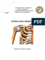 Osteologia General