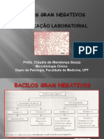Enterobactrias__BGNNF