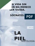 La Piel-power Point Dermo ( Impreso)