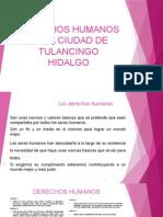 Derechos Humanos básico