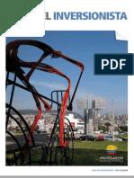 Guia Del Inversionista 2013