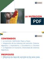 TEMA 3. LA NUTRICION.pdf