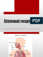 sistemul_respirator.pptx