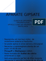 Aparate Gipsate LP