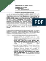 MODELO DE AUDIENCIA