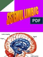 a15sistemullimbic-atlasdeneuroanatomie-141010032039-conversion-gate02.ppt