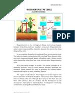 Biogeochemistry Cycle