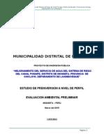 evaluacion ambiental preliminar