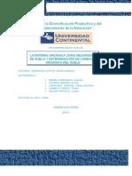 Informe ( Materia Organica y Carbono Organico) (1)