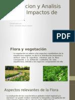 impacto de la flora