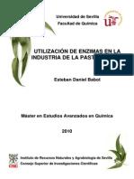 Utilización de enzimas en la industria de la pasta y papel.pdf
