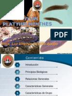 01.PLATYHELMINTHES