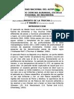 RECONOCIMIENTO DE LA TRUCHA.docx