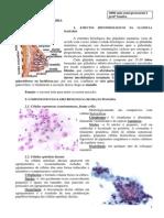 citologia_clinica_4ano_sandra02.pdf