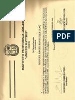 Diplomado Produccion