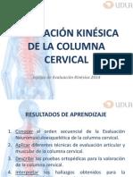 5, 6.- Columna Cervical 2015
