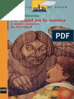 Un Angel en La Azotea y Otros Cuentos de N - M. B. Brozon