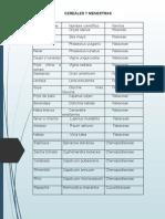 Diapositiva de Ecologia