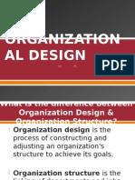 Organizational Design. Report