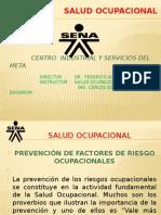 Prevencion de Factores de Riesgos Ocupacional