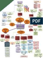 Mapa Conceptual presupuestos
